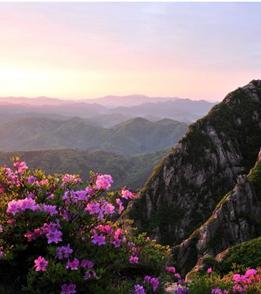 Depiction of Wolchulsan_National_Park